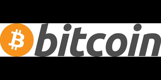 Bitcoin die dezentrale Kryptowährung, die Blockchain bekannt machte